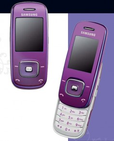 Samsung SGH-L600 photo