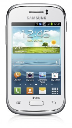 Samsung Galaxy Young S6310 photo