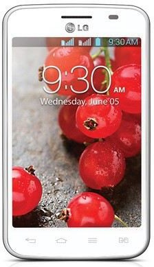 LG Optimus L4 II Dual E445 photo